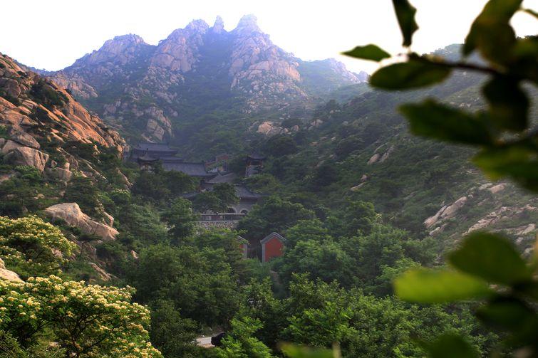 国家aaaa级风景区-青岛茶山风景区位于青岛市平度城北11公里,背依大泽